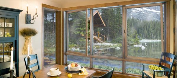 Beautiful Jeld Wen windows